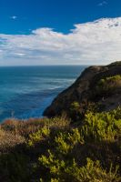 Afternoon in Malibu by PaulBrozenich