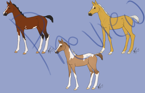 Work horse foals PREVIEW by byrch