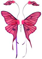 Pink Luna Moth Fairy Wings by customfairywings