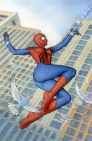 spider girl color by stevesafir