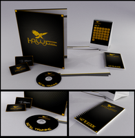 Hawk - Corporate Design by JourdainTSC