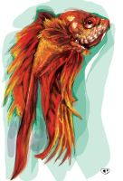 betta fish by chansonpresley
