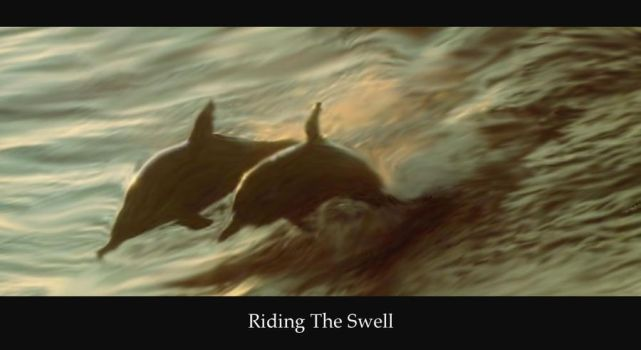 Riding The Swell by GuyDub