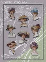 a hat for every day by libidules