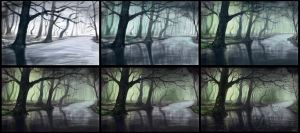 Fantasy forest process by Azot2014
