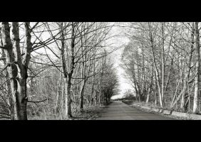The Road Ahead by Val-Faustino
