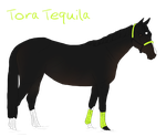 Tora Tequila - sold by Lenee1