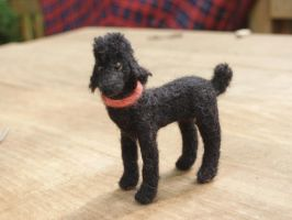 Shanti- Hand felted poodle by feltAliza
