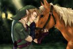The legend of Zelda Twilight Princess by Fulon-kyun