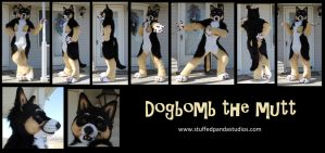 Dogbomb the Mutt fullsuit by stuffedpanda-cosplay