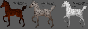 4637 Nordanner Foal by RW-Nordanners