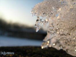 beautiful, cold and fragile II by FrlBlutrausch