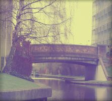 following the canal by georgiadevine