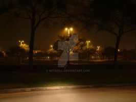 Of Parking Lots and Trees by Mitszell