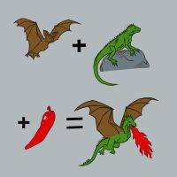 how dragons are made by motterhorn