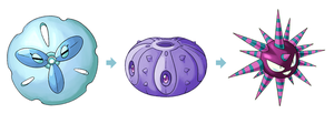 Pokemon Sea Urchin by CauseImDanJones