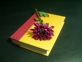 Book and Flower 1 by disenchantedstock