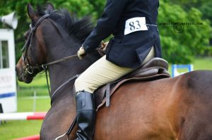 cantering away headshot_stock by popui