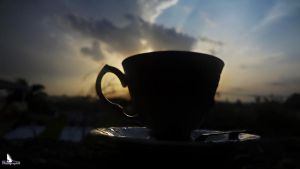 My Cup of Sunset III by LazareLobo