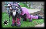 Realis the Aurora Lion art doll OOAK! by CreaturesofNat