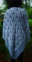 Nested Pineapple Shawl by W0IfDreamer