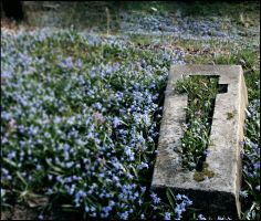 blue cemetery moments II by nebuna