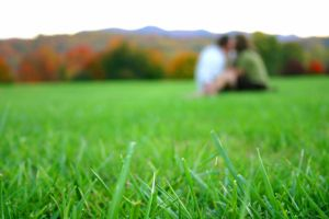 Couple in the grass by Juliephotography