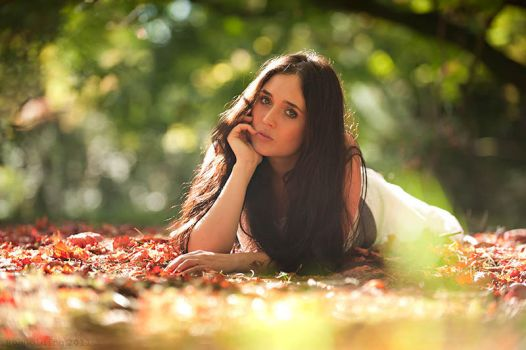 Summer dies, Autumn arrives by robgolding