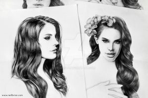 Lana del Rey (Concept Sketches) by neilbrian
