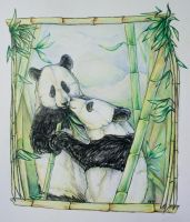 Panda Love by Puppy-Chow