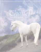 Chanel HP by Belle-Vaux