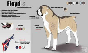 Floyd - Reference Sheet by Floyd46