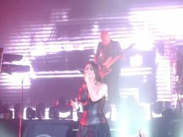 Sharon Den Adel - Within Temptation by TheNipster