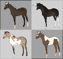 Foals for Myth by Dakaree