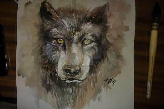 watercolour wolf by gieeref