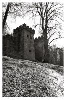 Castle on a Hill by the-artful