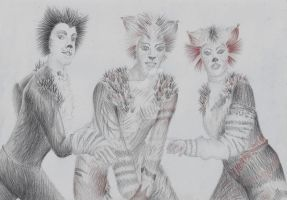 What's a Jellicle Cat??? by chickenpopcorn