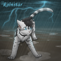 Warriors FC- Rainstar by min-mew