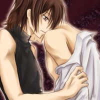 Lelouch and Suzaku are in love by BelgiumGeassFan