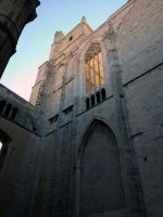 Cathedrale de Narbonne by nono6901