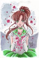 Sailor Moon: Guardian of Love and Bravery by Vestal-Spirit