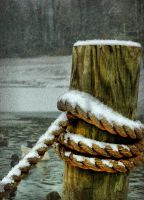 Dock Through Snow by TimLaSure
