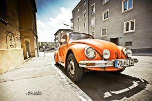 Orange beetle by KrisSimon
