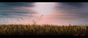 June Wheat Field II by Callu
