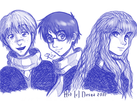 Harry Potter Trio by desna
