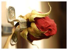 Rose Lock by Dave3of4