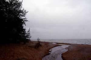 Baltic dunes by Ilharess