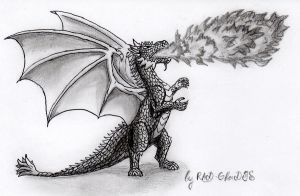 Angry dragon by RAD-GLaDOS