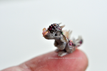 I spy a butterfly Miniature Dragon Sculpture by wibblequibble