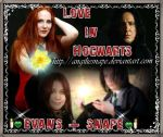 love_in_hogwarts by AngilieSnape